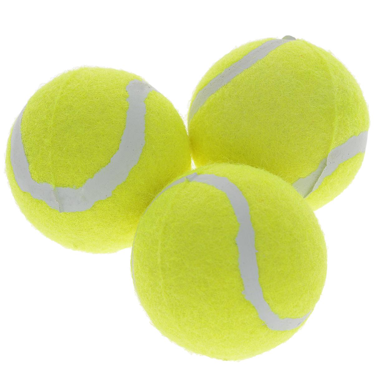 Набор теннисных мячей Start Up, в тубе, 3 шт161919Теннисный мяч Start Up не оставит равнодушными поклонников большого тенниса. Мяч выполнен из высококачественного фетра, и разработан специально для любителей. Набор состоит из трех мячей. Характеристики: Цвет: желтый. Диаметр мяча: 6 см. Размер упаковки: 20 см х 7 см х 7 см.Производитель: Китай. Артикул: 161919.