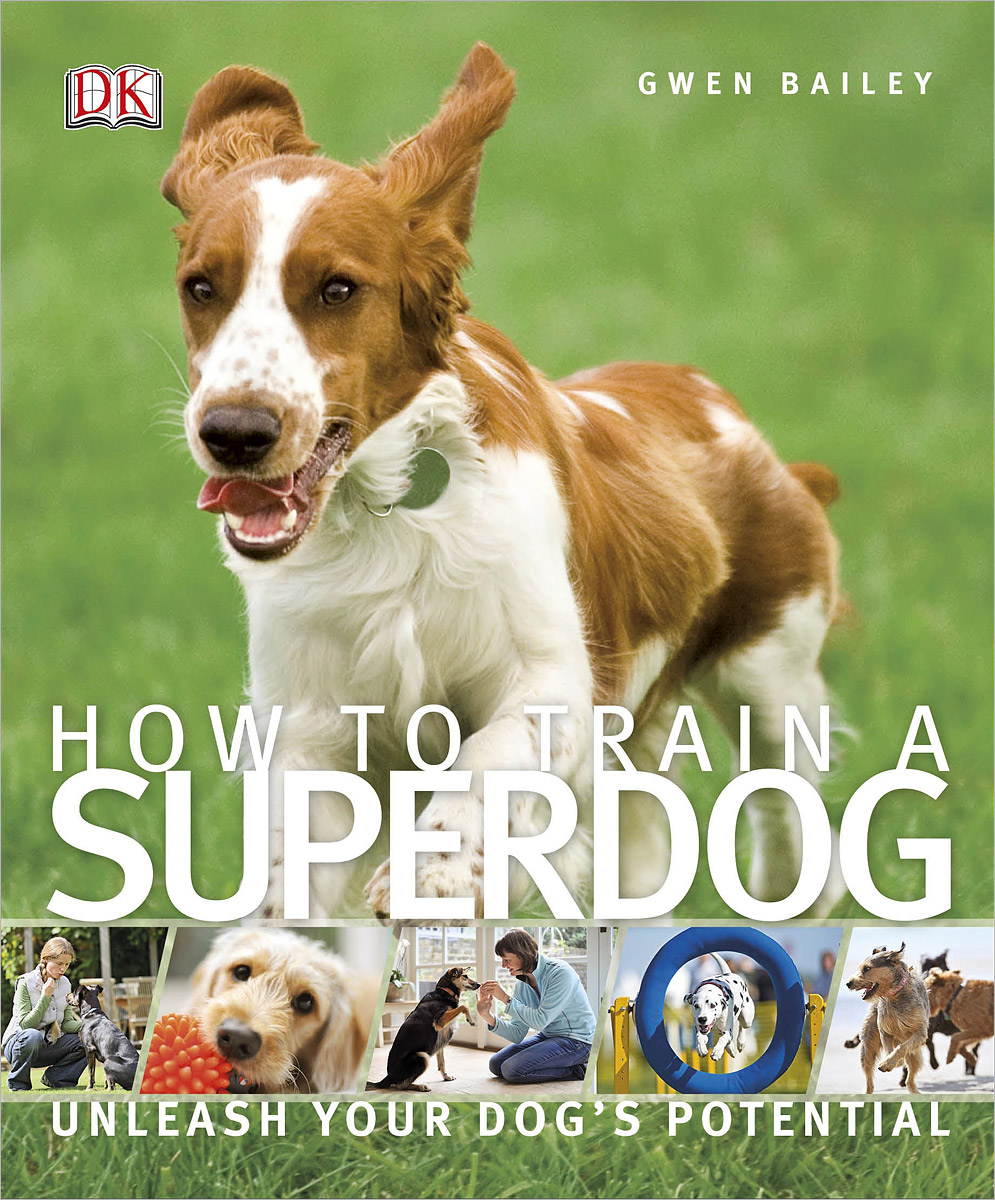 How to Train a Superdog stretch your dog healthy