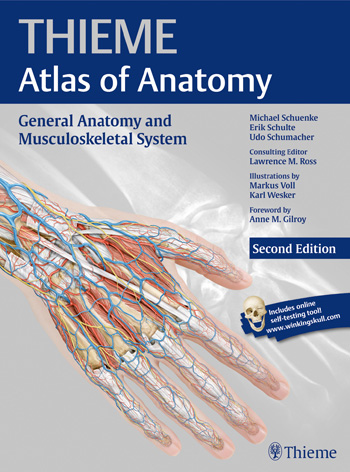 General Anatomy and Musculoskeletal System (THIEME Atlas of Anatomy), second edition clinical sports anatomy