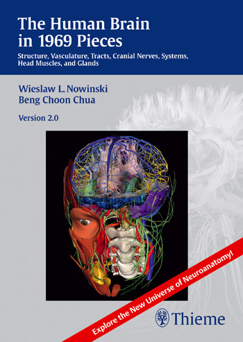 Human Brain in 1969 Pieces 2.0: Structure, Vasculature, Tracts, Cranial Nerves, Systems, Head Muscles, and Tracts ben buchanan brain structure and circuitry in body dysmorphic disorder