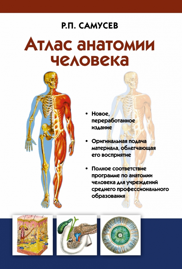 Самусев Р.П. Атлас анатомии человека. Учебное пособие самусев р атлас анатомии человека