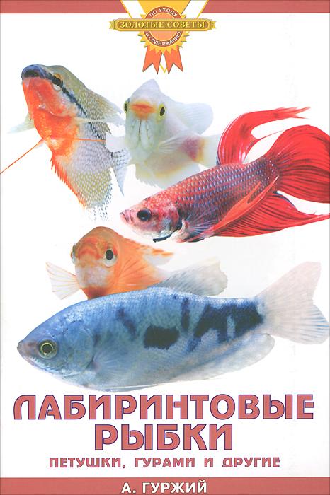 А. Гуржий Лабиринтовые рыбки. Петушки, гурами и другие