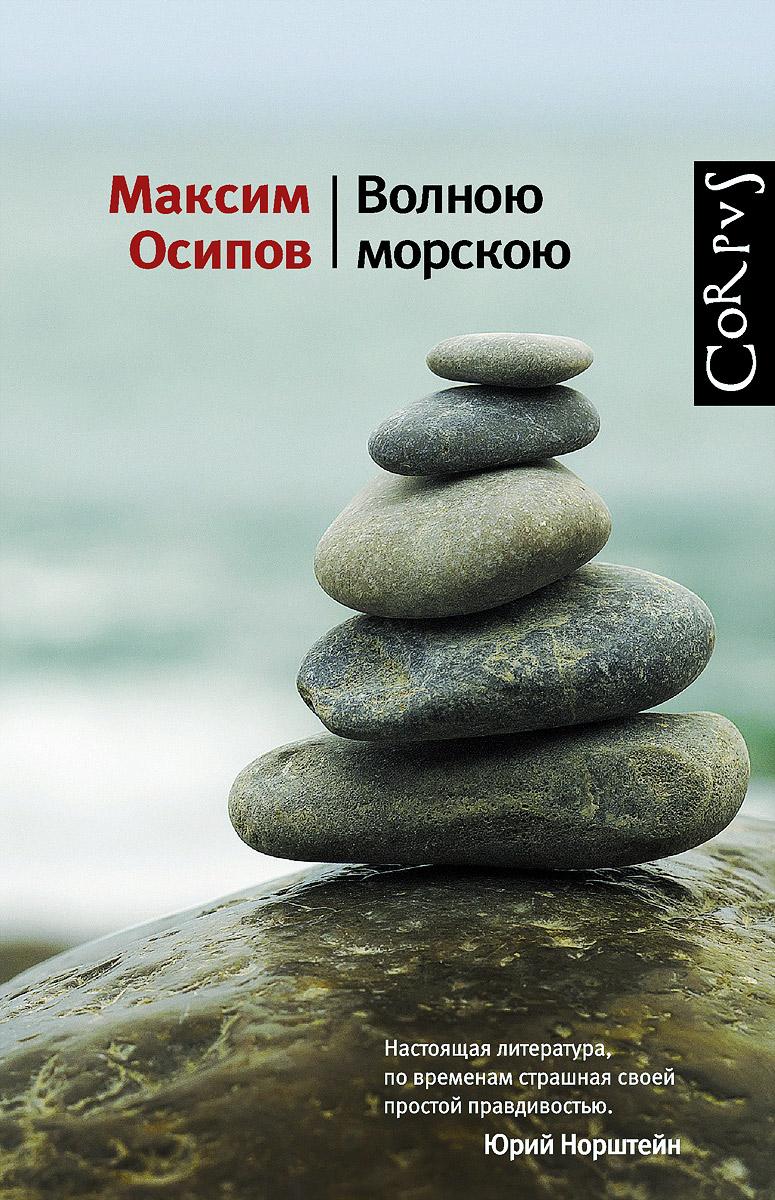Максим Осипов Волною морскою и в осипова финансовый учет сборник задач