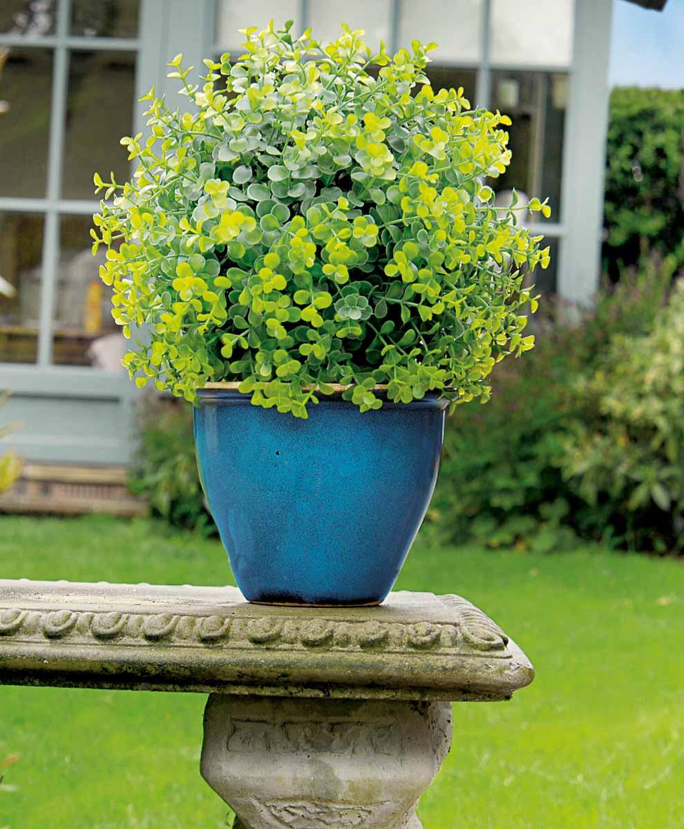 """Искусственное растение Gardman """"Topiary Ball"""" выполнено из пластика в виде шара. Композиция представляет собой мелкие листья салататово-зеленого цвета. К растению прикреплены три цепочки с крючком, за который его можно повесить в любое место. Также растение можно поместить в горшок.  Растение устойчиво к воздействиям внешней среды, таким как влажность, солнце, перепады температуры, не выцветает со временем.    Искусственное растение Gardman """"Topiary Ball"""" великолепно украсит интерьер офиса, дома или сада. Характеристики:  Материал: пластик, металл. Цвет: зеленый. Диаметр шара: 30 см. Длина цепочек с крючком: 30 см."""