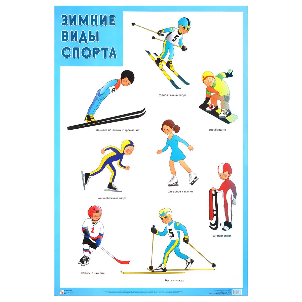 Зимние виды спорта. Плакат