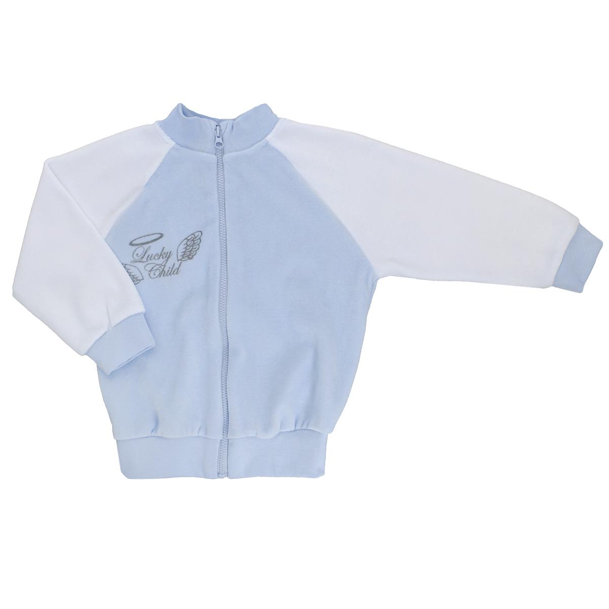 Кофточка детская Lucky Child Ангелы, цвет: голубой, белый. 17-18. Размер 80/8617-18Кофточка для новорожденного Lucky Child Ангелы с длинными рукавами-реглан послужит идеальным дополнением к гардеробу вашего малыша, обеспечивая ему наибольший комфорт. Изготовленная из велюра, она необычайно мягкая и легкая, не раздражает нежную кожу ребенка и хорошо вентилируется, а эластичные швы приятны телу малыша и не препятствуют его движениям. Удобная застежка-молния по всей длине помогает легко переодеть младенца. Рукава, низ изделия и горловина дополнены широкими трикотажными резинками.Кофточка на груди оформлена надписью в виде логотипа бренда и изображением крылышек, а на спинке дополнена текстильными крылышками, вышитыми металлизированной нитью. Кофточка полностью соответствует особенностям жизни ребенка в ранний период, не стесняя и не ограничивая его в движениях. В ней ваш малыш всегда будет в центре внимания.
