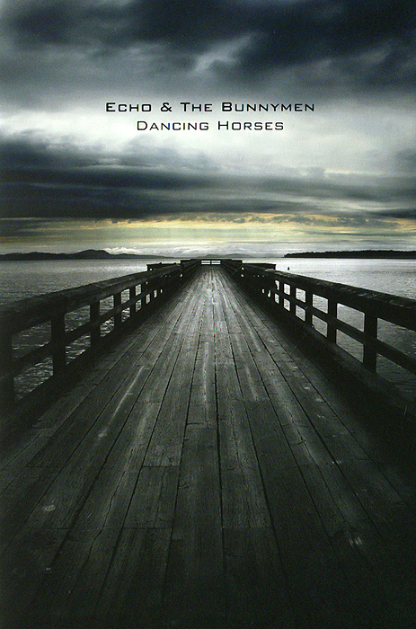 Echo & The Bunnymen: Dancing Horses бензопила echo cs 361wes 14