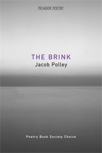 The Brink ar ammons brink road – poems