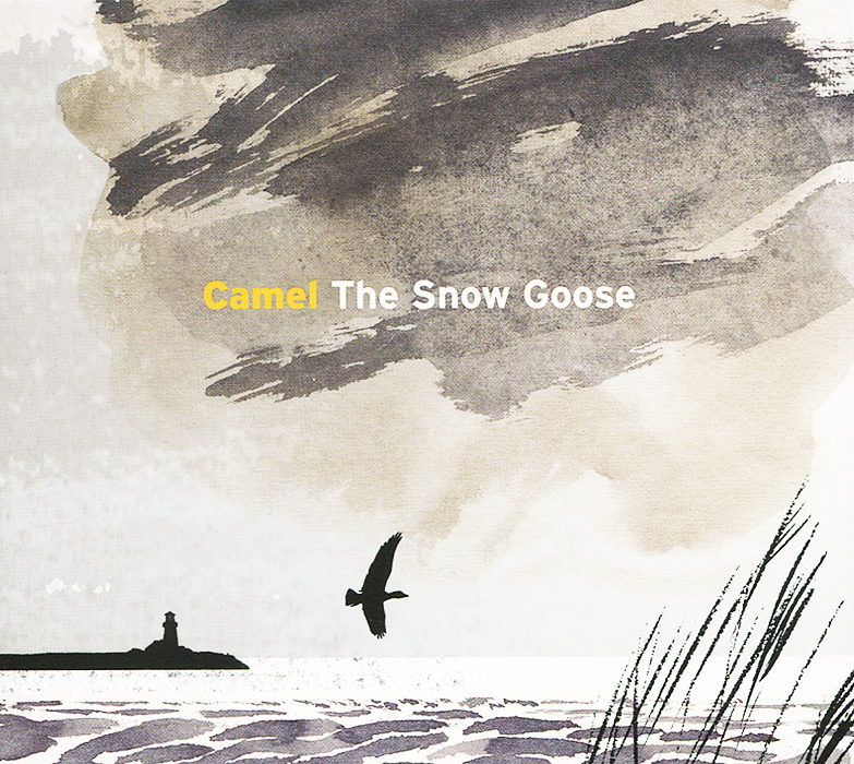 Camel Camel. The Snow Goose camel footage
