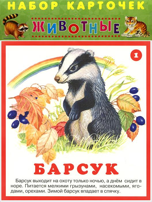 Животные (набор из 22 карточек)