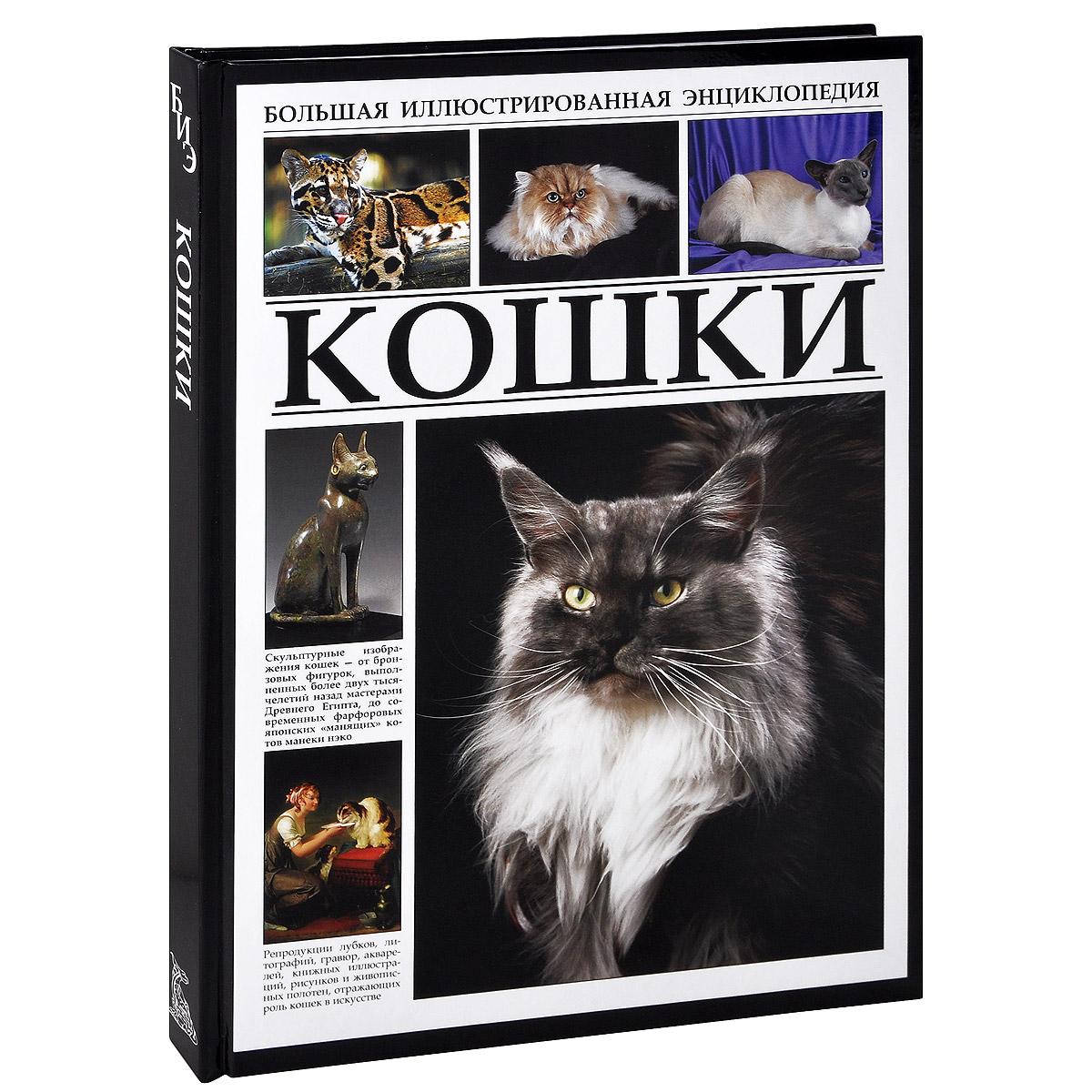 Кошки сара уайтхед как воспитать котенка практическое руководство для детей и их родителей
