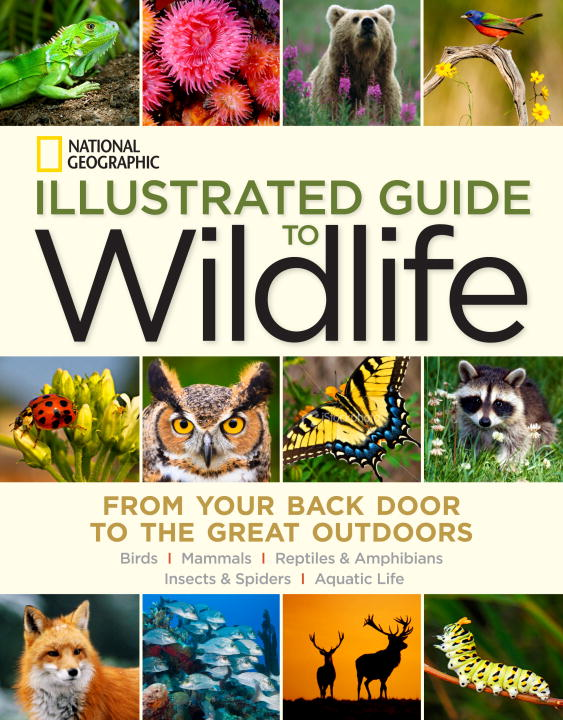 NGEO ILLUSTRATED GDE WILDLIFE the american spectrum encyclopedia the new illustrated home reference guide