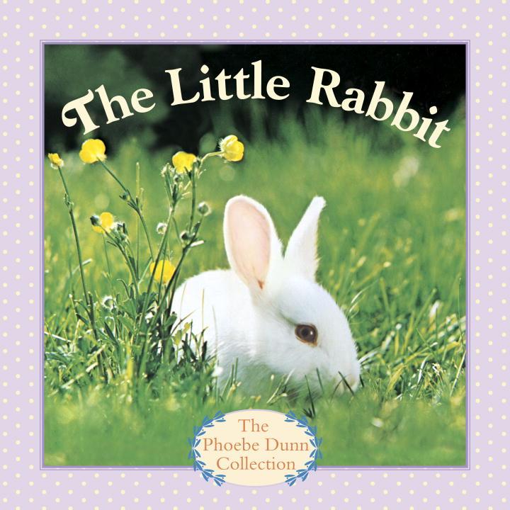 LITTLE RABBIT, THE little friends flashcards набор из 21 карточки