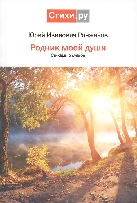 Юрий Ронжаков Родник моей души. Стихами о судьбе дома в башкирии в красноусольске