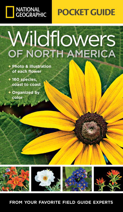 Wildflowers of North America: Pocket Guide national geographic pocket guide to the night sky of north america