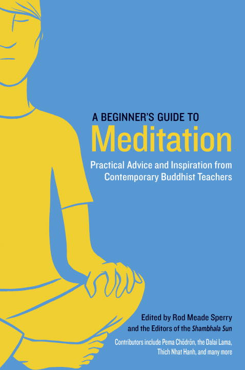 BEGINNER'S GUIDE TO MEDITATION alexander mishkin how to stay young it