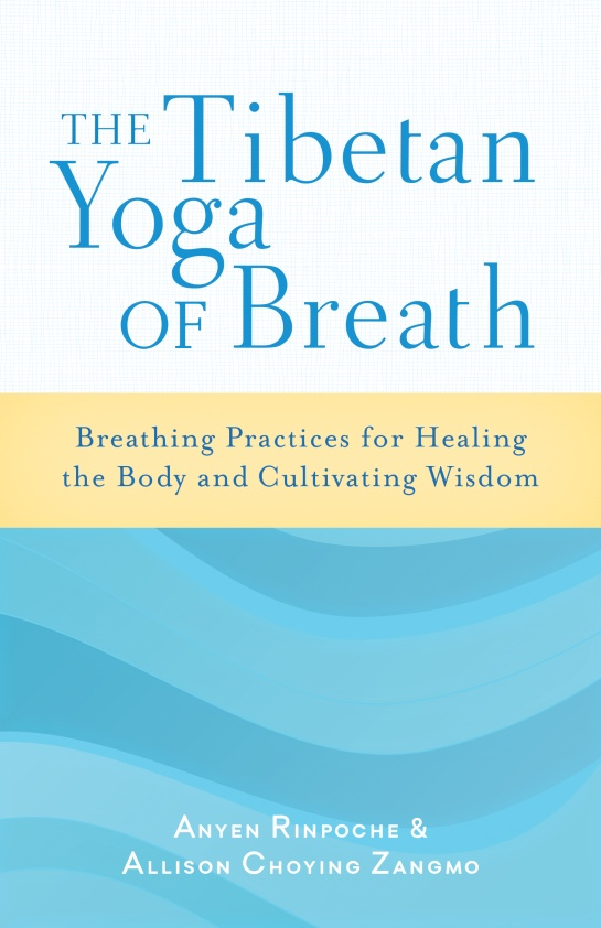TIBETAN YOGA OF BREATH, THE foundations in craniosacral biodynamics volume one the breath of life and fundamental skills