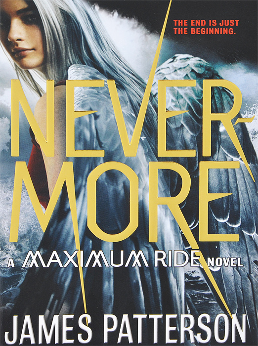 Nevermore: A Maximum Ride Novel the lonely polygamist – a novel