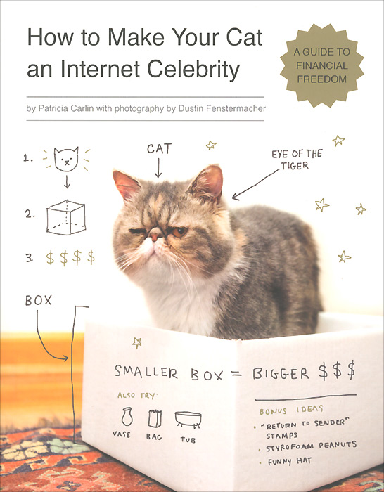 How to Make Your Cat an Internet Celebrity managing the store
