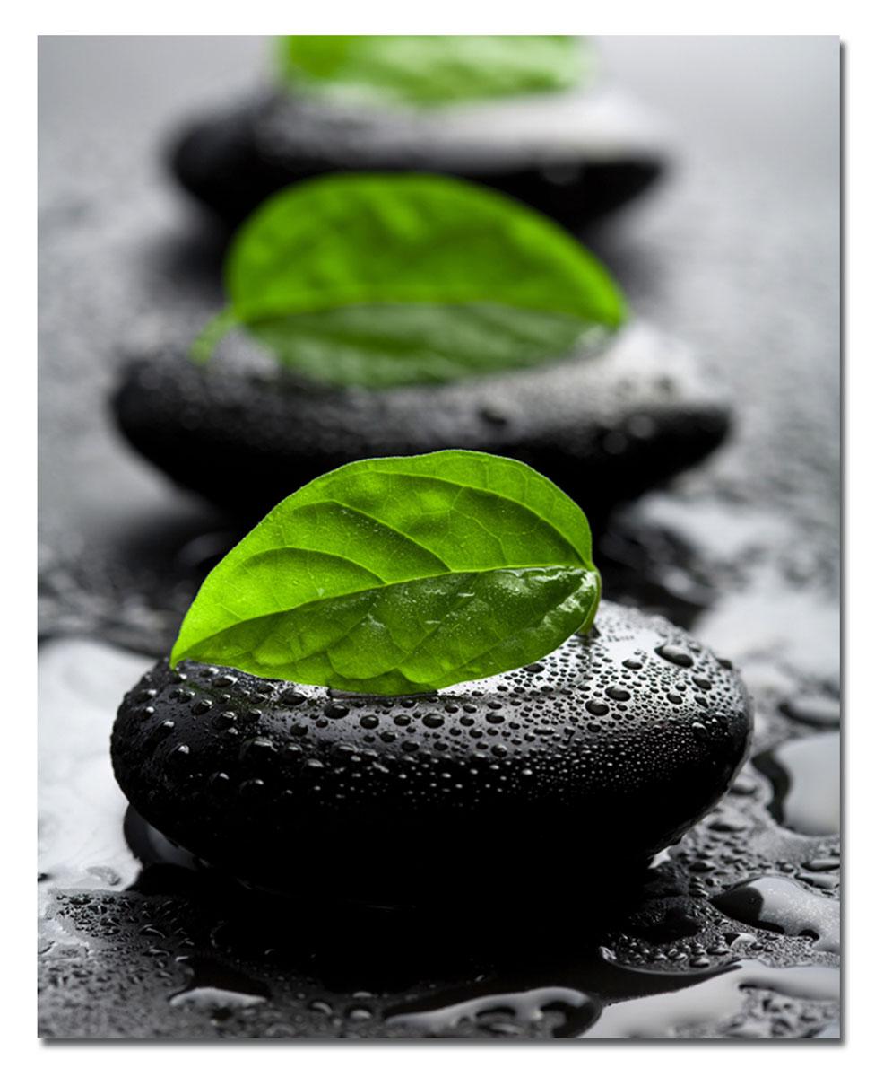 Канвас Idea Зеленый листок, 40 см х 50 смIDEA CT3-07Канвас - это ткань с художественной фотопечатью, натянутая на деревянный каркас. Такое изделие - оригинальный декоративный элемент, способный преобразить любой интерьер. Картина оформлена красочным изображением листьев на камнях. С задней стороны имеется петелька для подвешивания к стене. Стильный, современный дизайн, а также яркие и насыщенные цвета сделают эту картину прекрасным дополнением интерьера комнаты.
