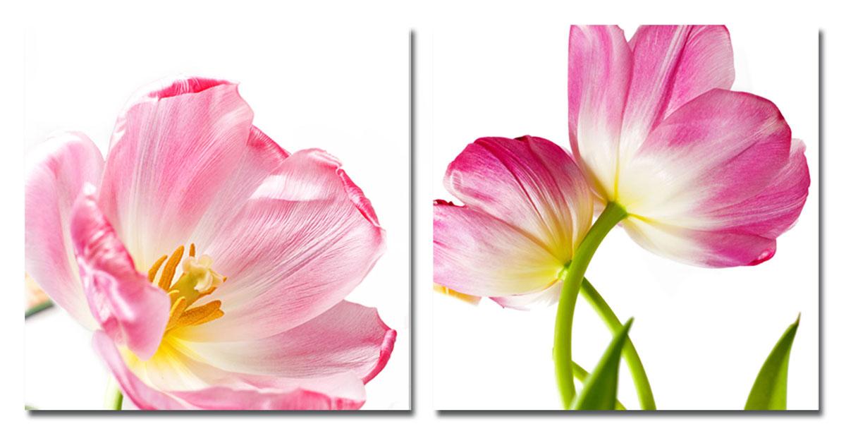 Канвас диптих Idea Розовые цветы, 100 х 50 см, 2 штIDEA FL2-09Канвас - это ткань (полиэстер) с художественной фотопечатью, натянутая на деревянный каркас. Диптих включает два элемента, которые образуют единый рисунок. Такое изделие - оригинальный декоративный элемент, способный преобразить любой интерьер. Картина оформлена красочным изображением розовых тюльпанов. С задней стороны имеются петельки для подвешивания к стене. Элементы следует размещать на стене, оставляя между ними небольшой промежуток.Стильный, современны