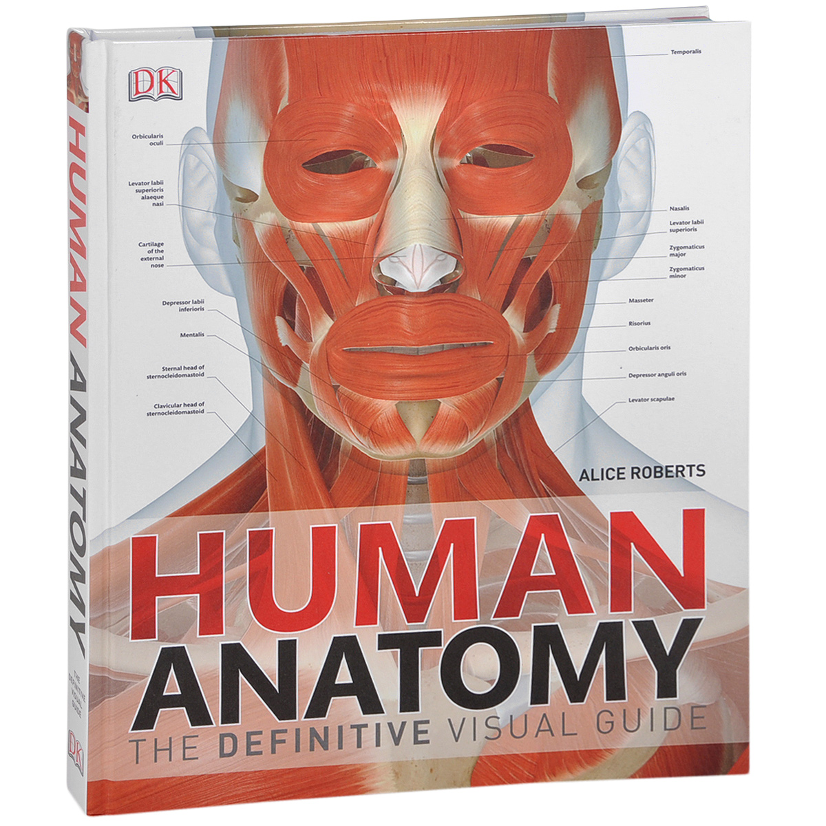 Human Anatomy: The Definitive Visual Guide anatomy of a disappearance