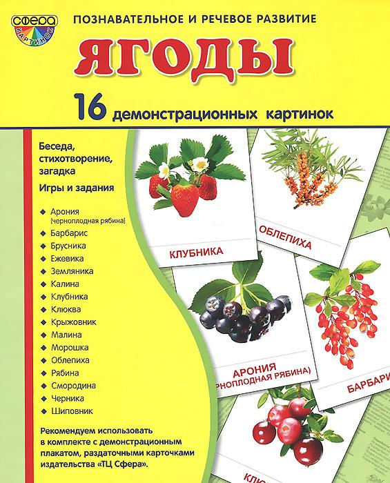 Ягоды (набор из 16 демонстрационных картинок). Т. В. Цветкова, Т. А. Шорыгина