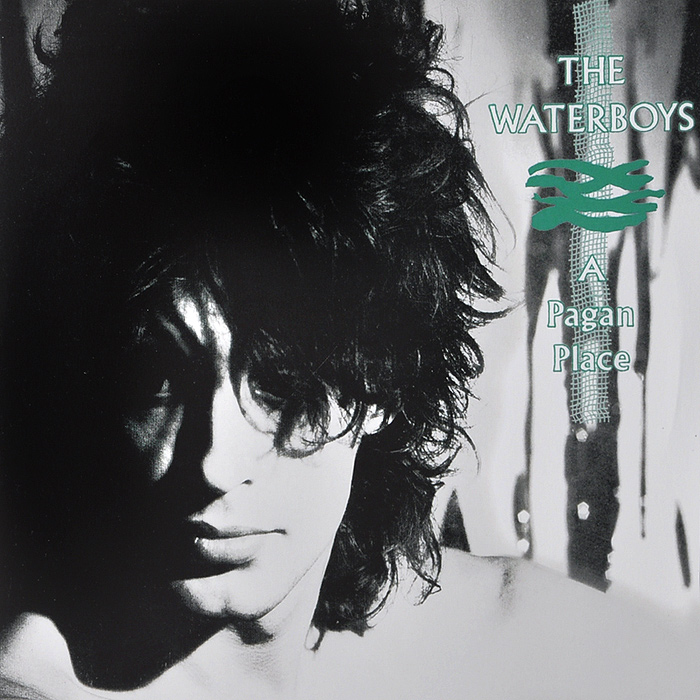 The Waterboys The Waterboys. A Pagan Place (LP) the pagan night