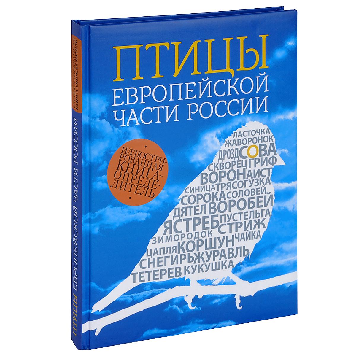 Василий Вишневский Птицы европейской части России сувениры рнтойс гнездо с яйцами