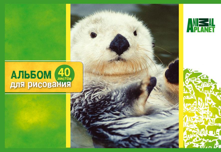 Набор альбомов для рисования ACTION! Animal Planet, 40 листов, 2 шт, в ассортименте альбом для рисования action animal planet на гребне 40 листов в ассортименте