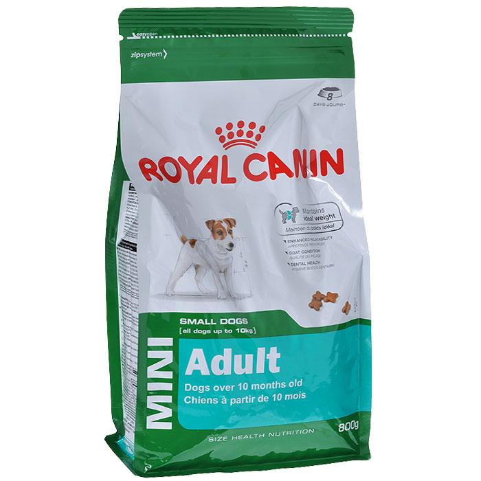 Корм сухой Royal Canin Mini Adult, для собак мелких размеров с 10 месяцев до 8 лет, 800 г корм сухой royal canin mini light weight care для взрослых собак склонных к ожирению 2 кг