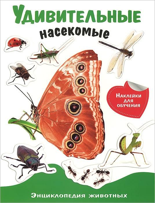 Удивительные насекомые (+ наклейки) футболка классическая printio я покажу тебе мир