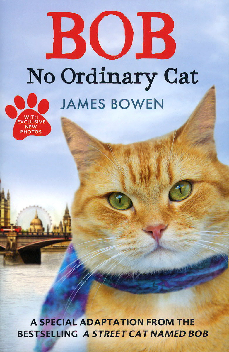 Bob: No Ordinary Cat a street cat named bob how one man and his cat found hope on the streets