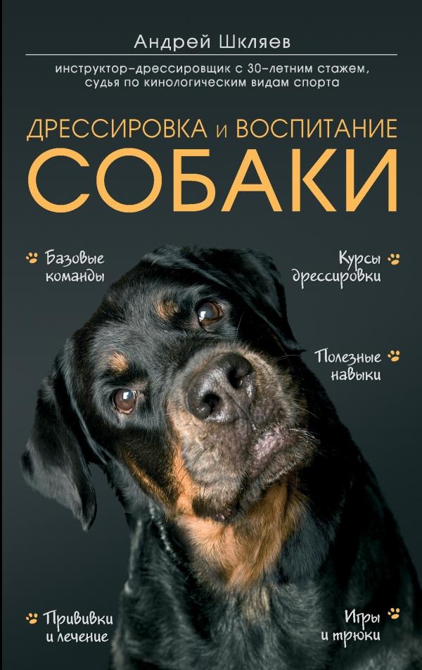 Шкляев Андрей Николаевич Дрессировка и воспитание собаки купить конверсы в минске