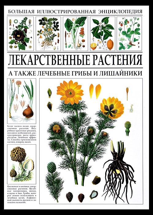 Большая иллюстрированная энциклопедия. Лекарственные растения южаков с д лекарственные средства