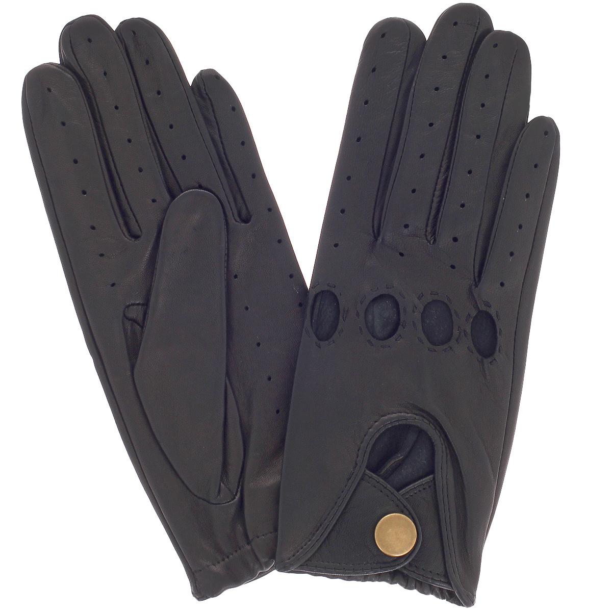 Перчатки унисекс Dali Exclusive, цвет: черный. IS1/BL. Размер 8 перчатки женские eleganzza цвет черный is0424 размер 8