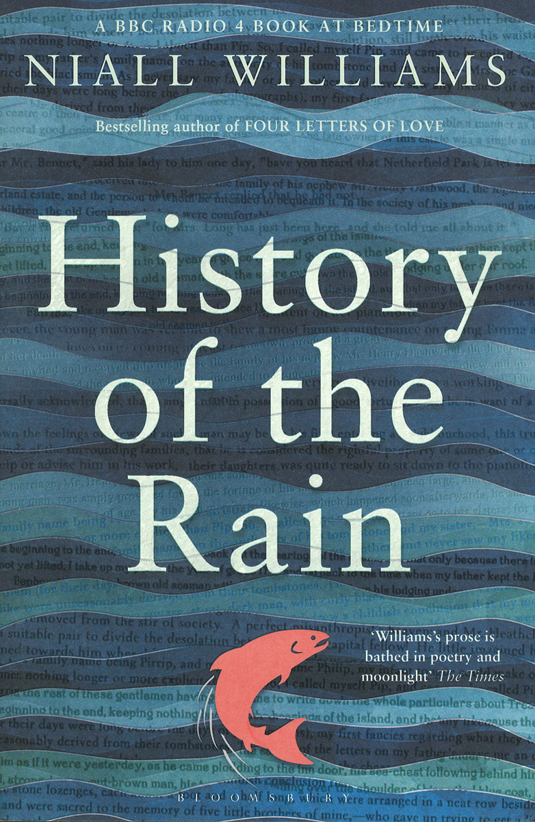 History of the Rain stein g the art of racing in the rain a novel