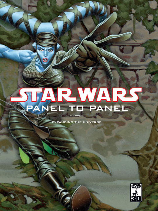 Sw panel to panel v 2