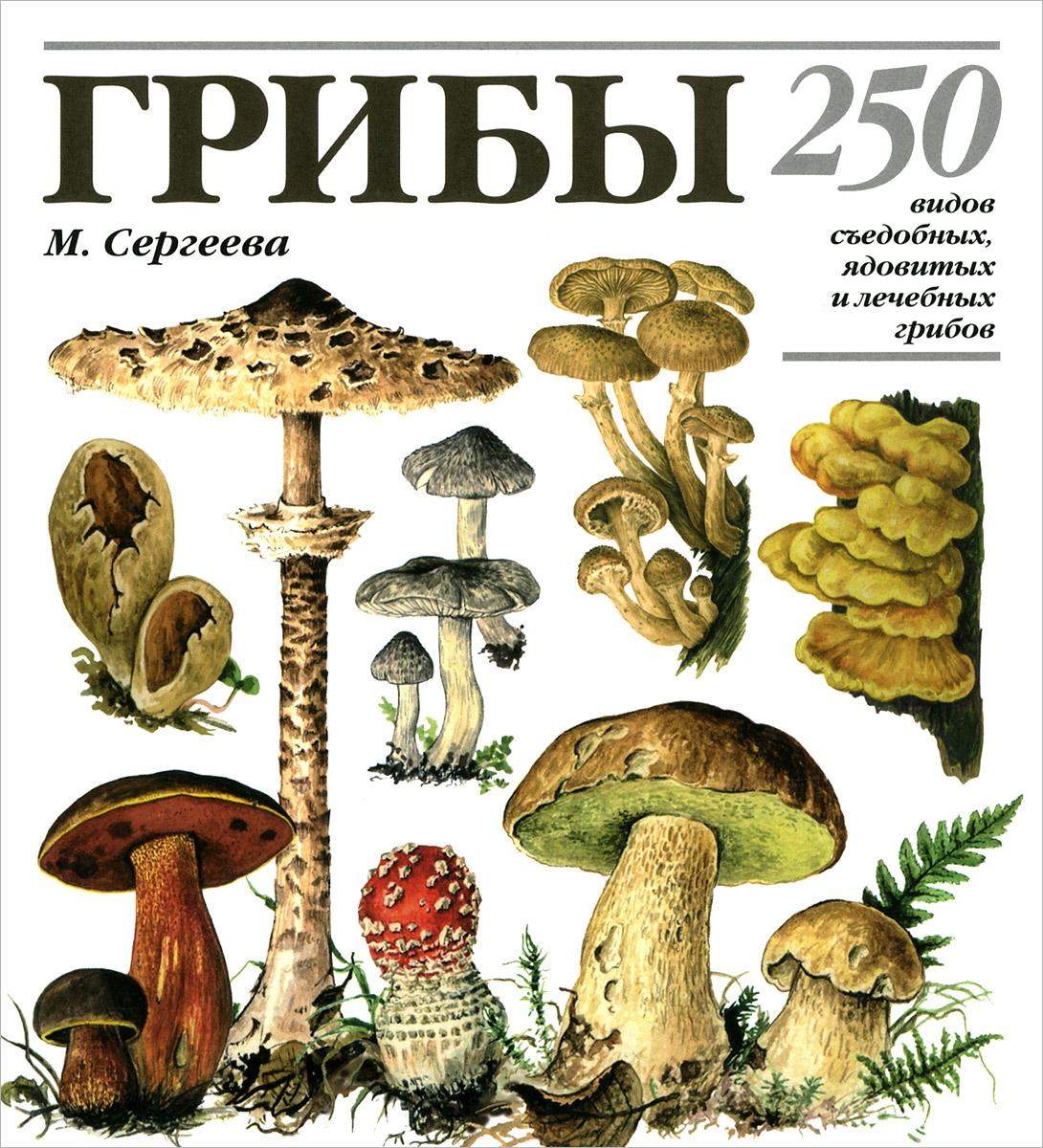 М. Н. Сергеева, Н. Г. Замятина, Л. В. Гарибова Грибы. 250 видов съедобных, ядовитых и лечебных грибов h snd m