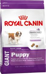 Корм сухой Royal Canin Giant Puppy, для щенков собак очень крупных размеров от 2 до 8 месяцев, 15 кг корм сухой royal canin german shepherd junior для щенков собак породы немецкая овчарка до 15 месяцев 12 кг