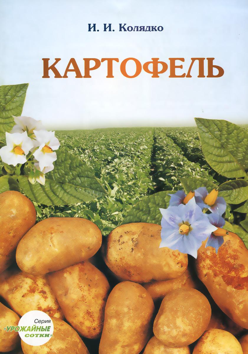 И. И. Колядко Картофель в казахстане мини клубни картофеля