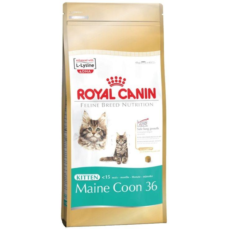 Корм сухой Royal Canin Maine Coon Kitten, для котят породы мейн-кун в возрасте от 3 до 15 месяцев, 2 кг консервы royal canin maine coon adult для кошек породы мейн кун в возрасте старше 15 месяцев мелкие кусочки в соусе 85 г