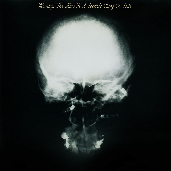 Ministry Ministry. The Mind Is a Terrible Thing to Taste (LP) zayn zayn mind of mine 2 lp