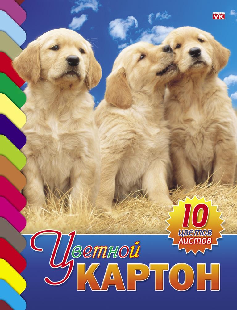 Цветной картон Hatber Три щенка, 10 листов10Кц4к_01021Набор бумаги и цветного картона Hatber Три щенка позволит вашему малышу раскрыть свой творческий потенциал. Набор содержит 10 листов цветного картона оранжевого, золотого, серебряного, желтого, черного, коричневого, зеленого, голубого, фиолетового, красного цветов. На внутренней стороне обложки расположено изображение очаровательного щенка и бабочки, которое малыш сможет раскрасить по своему желанию.Создание поделок из картона - это увлекательнейший процесс, способствующий развитию у ребенка фантазии и творческого мышления.Набор не содержит каких-либо инструкций - ребенок может дать волю своей фантазии и создавать собственные шедевры! Набор прекрасно подойдет для создания аппликаций и изготовления поделок из картона. Порадуйте своего малыша таким замечательным подарком!