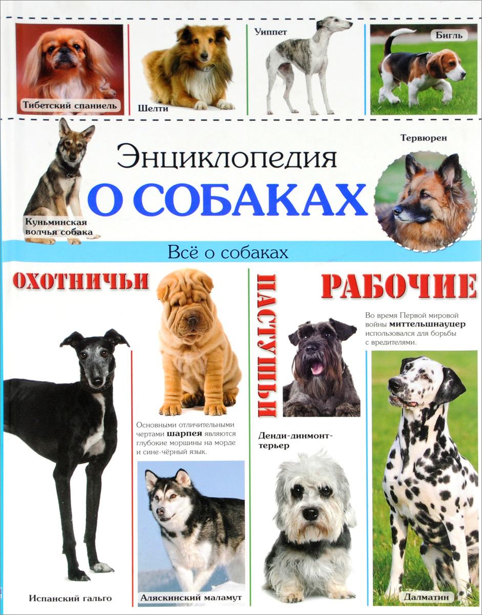 Энциклопедия о собаках. Все о собаках иллюстрированная книга о собаках