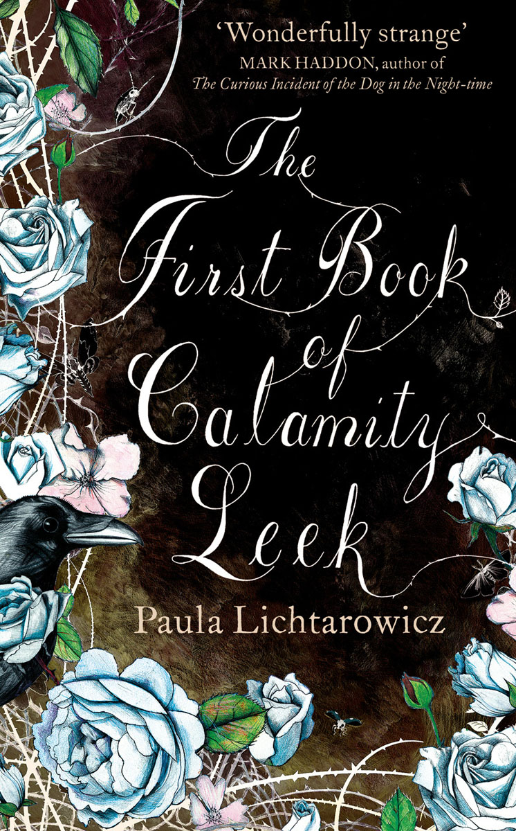 The First Book of Calamity Leek what a woman needs