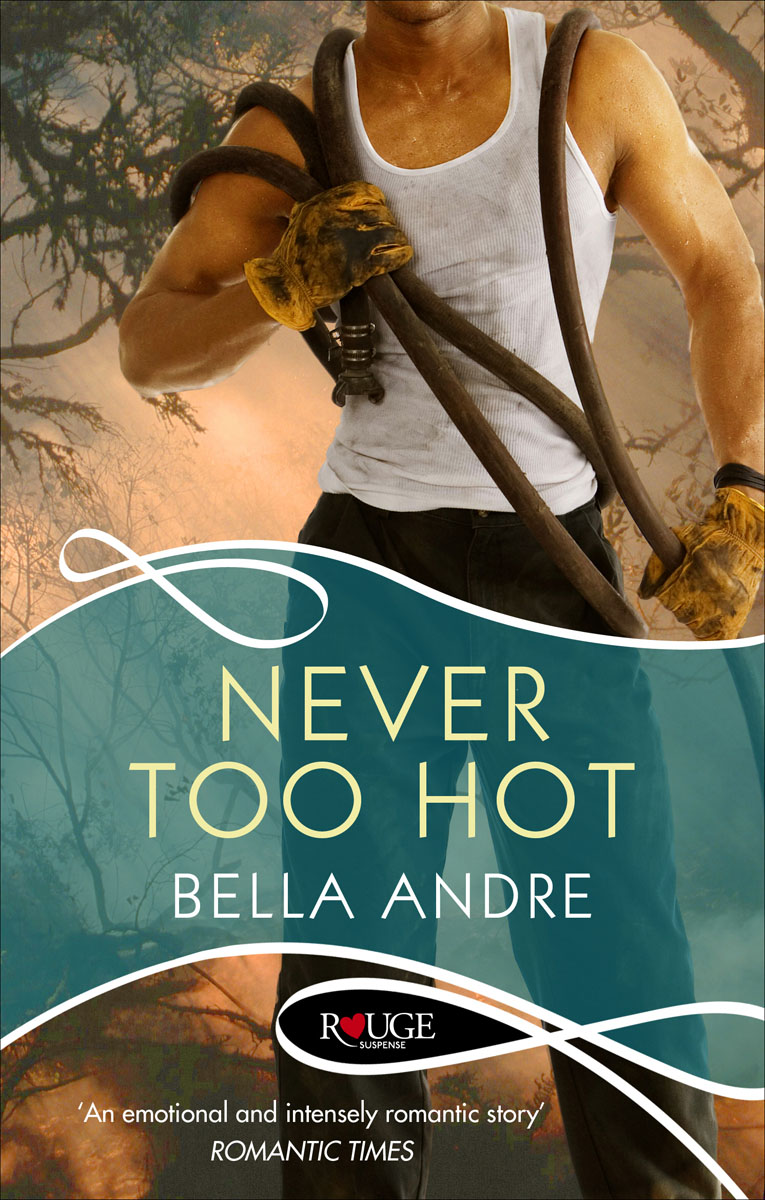 Never Too Hot: A Rouge Suspense novel the lonely polygamist – a novel