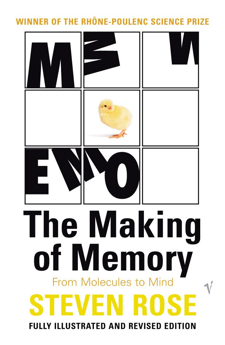 Making Of Memory box making