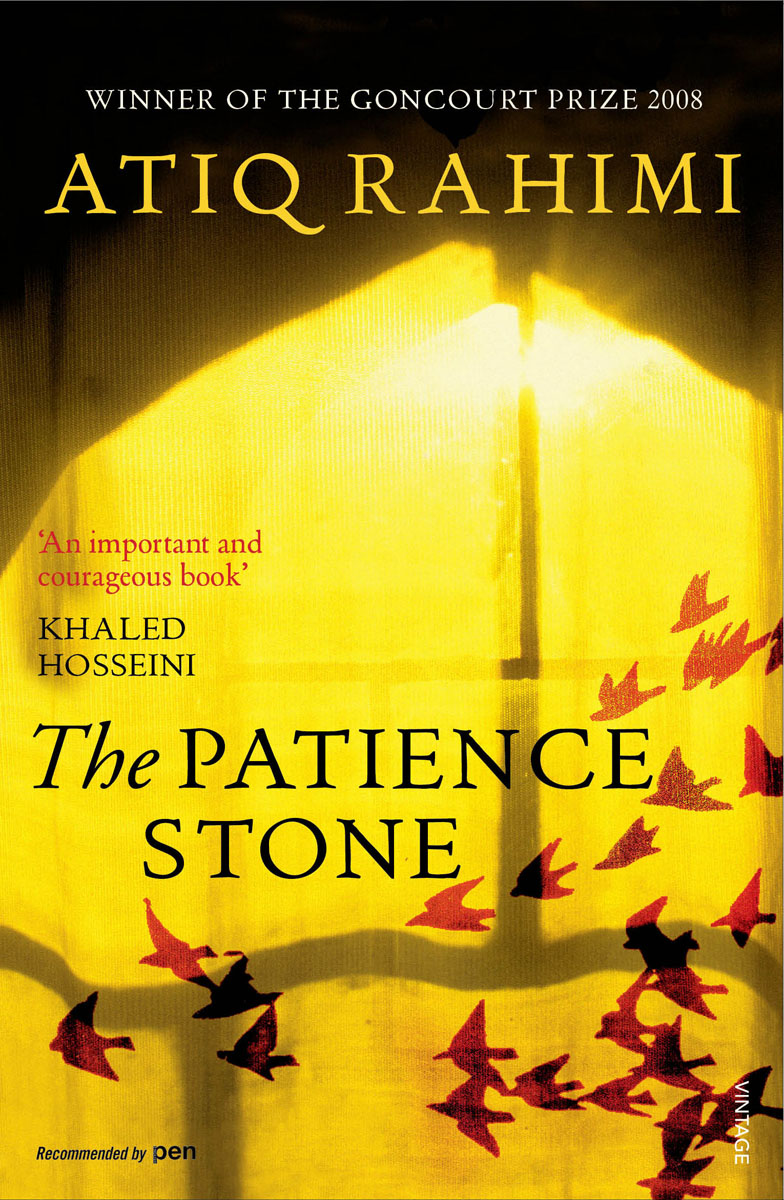 The Patience Stone confessions of a young novelist