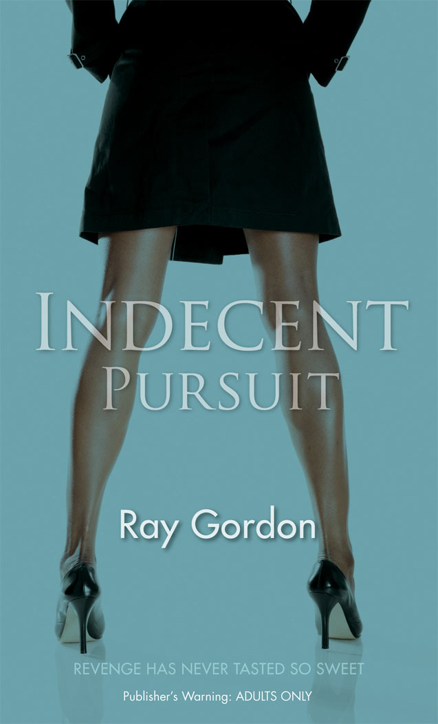 Indecent Pursuit sheena johnson organisational behaviour for dummies